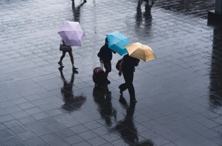Why Do Contractors Work Under Umbrella Companies?